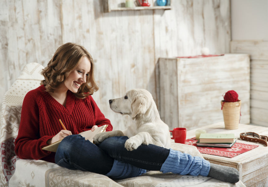 9 Tips For Creating A Great Home For Your New Dog