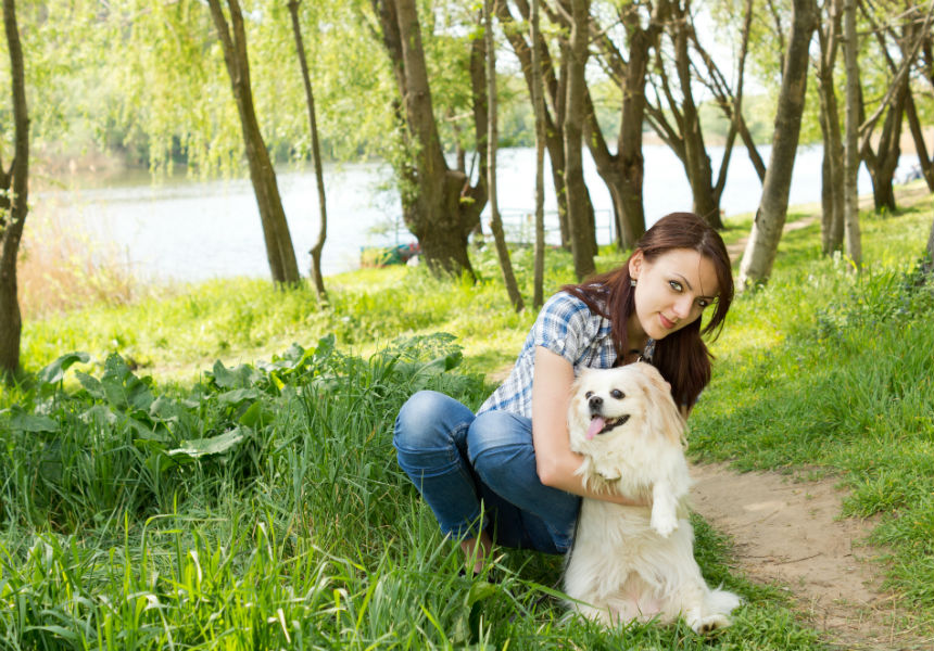 8 Golden Rules For Keeping Your Dog Healthy